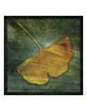 Gingko 3 Prints by John W. Golden