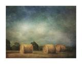 Hay Rolls Prints by Dawne Polis