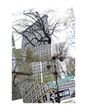 Flatiron Collage Art by Erin Clark