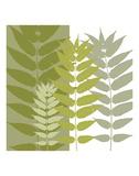 Garden Greens Print by Erin Clark
