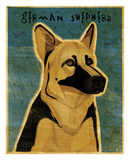 German Shepherd Prints by John W. Golden