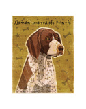 German Shorthaired Pointer Prints by John W. Golden