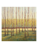 Grove of Trees Print by Libby Smart