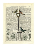 Garden Fork & Birds Poster by Marion Mcconaghie
