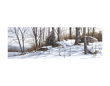 Primeras nieves Pósters por Ray Hendershot