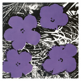 Flowers, c.1965 (4 purple) Poster af Andy Warhol
