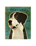 Great Dane (Mantle, no crop) Prints by John W. Golden