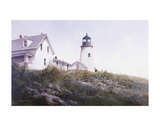 Gulls at Pemaquid Posters by Ray Hendershot