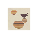 Fly on the Wall Prints by Amy Ruppel