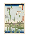 Irises at Horikiri, 1857 Poster by Ando Hiroshige