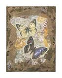 Honeycomb Butterflies Poster by Annabel Hewitt