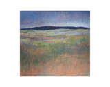 Landscape in Silvery Light Prints by Jeannie Sellmer