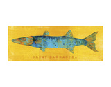 Great Barracuda Prints by John W. Golden