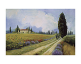 Holiday in Tuscany Print by Carolyne Hawley