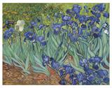 Irises in the Garden Art by Vincent van Gogh