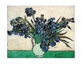 Schwertlilien Poster von Vincent van Gogh