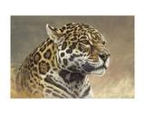 Jaguar Prints by Kalon Baughan