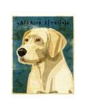 Labrador Retriever (NEW) Posters by John W. Golden