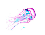 Jellyfish Study No. 2 Prints by Jessica Durrant