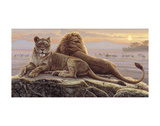 Lions of the Mara Prints by Kalon Baughan