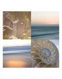 Kaleidoscope Of Memories III Poster by Sidney Aver