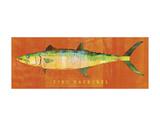 King Mackerel Prints by John W. Golden