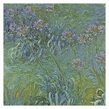 Jewelry lilies Print by Claude Monet
