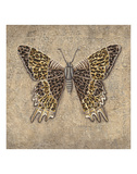 Leopard Butterfly Prints by Jennette Brice