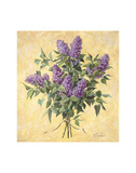 Lilac Season II Prints by Todd Telander
