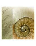 Kaleidoscope Of Memories II Art by Sidney Aver