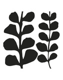 Maidenhair (black on white) Print by Denise Duplock