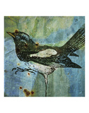 Magpie No. 1 Prints by John W. Golden