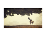 Look Back Posters by Mark Bridger
