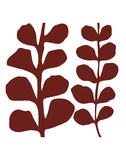 Maidenhair (red on white) Prints by Denise Duplock