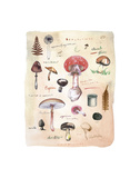 Mushrooms Poster by Lucile Prache