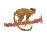 Monkey Prints by Teofilo Olivieri