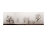 Misty Meadow Posters par Erin Clark