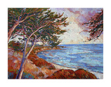 Monterey Cypress Prints by Erin Hanson