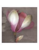 Magnolia Art by Elizabeth Hellman