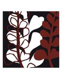 Maidenhair on Black Ground Prints by Denise Duplock