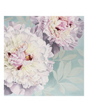 Peony on Blue Prints by Elizabeth Hellman