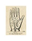 Palmistry: Palm Diagram Poster von  Vintage Reproduction