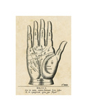 Palmistry: Palm Diagram Poster by  Vintage Reproduction