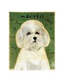Maltese Prints by John W. Golden