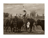Mancos Roping Prints by Barry Hart
