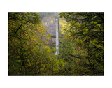 Oregon Waterfall Plakat af Jason Savage