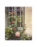 Paris Roses Poster by Dawne Polis
