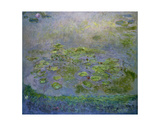 Nymphéas (Waterlilies), c. 1914-17 Posters by Claude Monet
