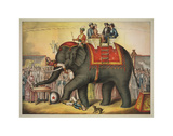 Performing Elephant Posters by  Vintage Reproduction