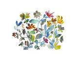 Peregrine Garden Print by Kiana Mosley